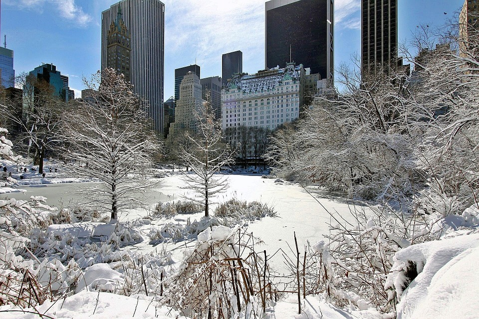 Neige de New York